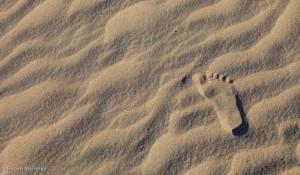 Rpbyn - Dunes